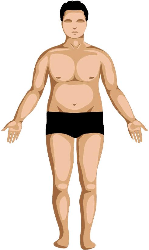 Kapha body-type image